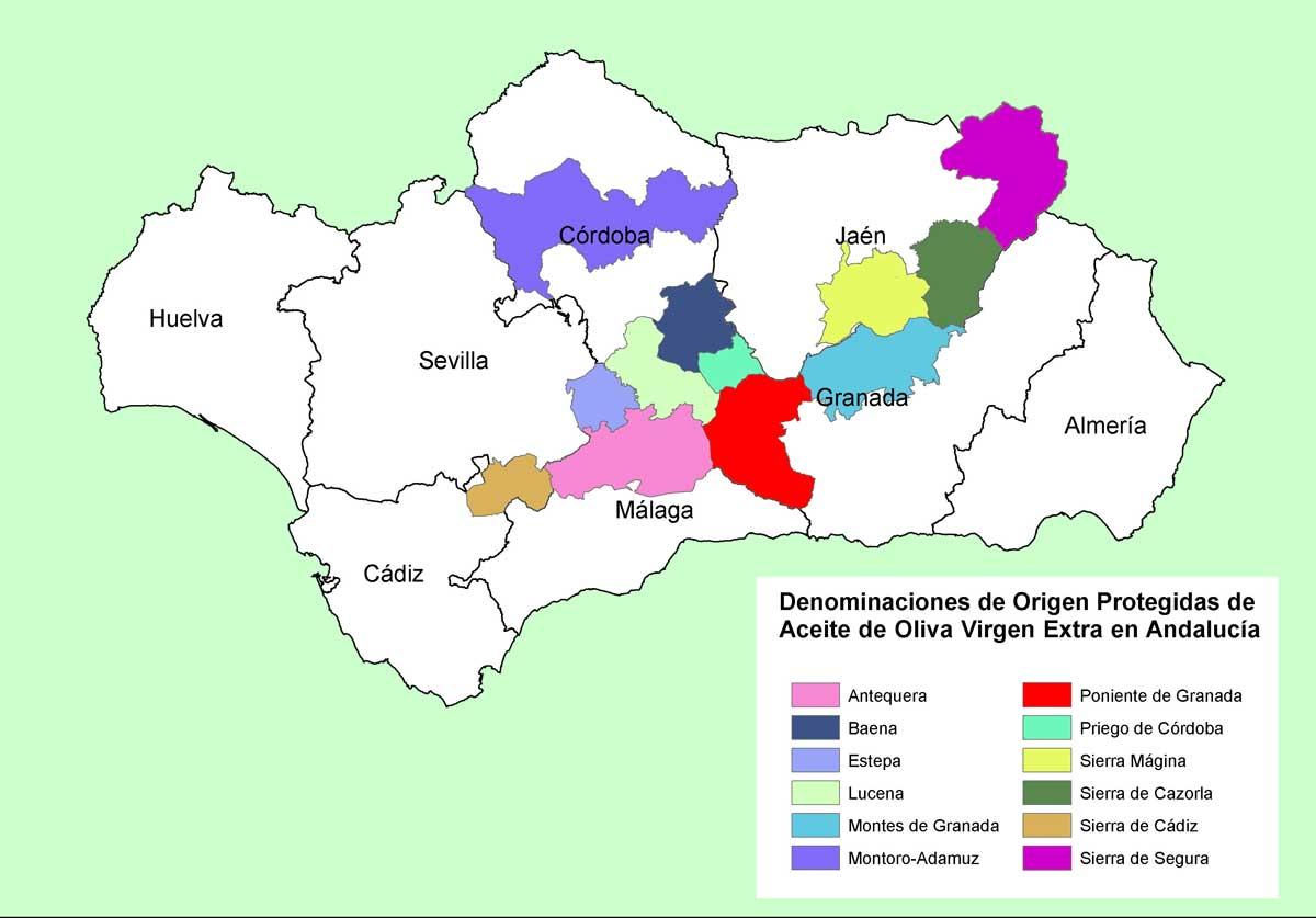 Aceites de oliva Denominaciones origen andalucia