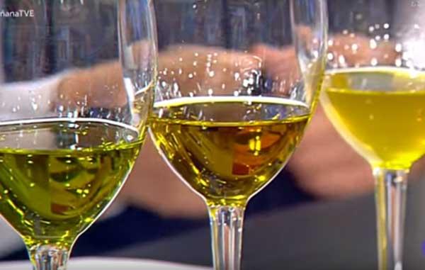 colores aceite de oliva