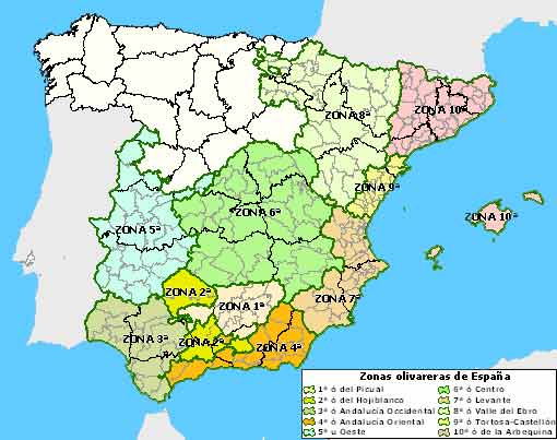 Regiones olivareras españolas